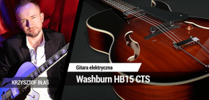 TEST: Washburn HB15 CTS