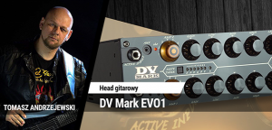 TEST: DV Mark EVO1