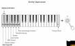 Yamaha reface CP - przenośne pianino cyfrowe mini - zdjęcie 6