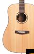 Morrison G-1004 D SM - gitara akustyczna - zdjęcie 3